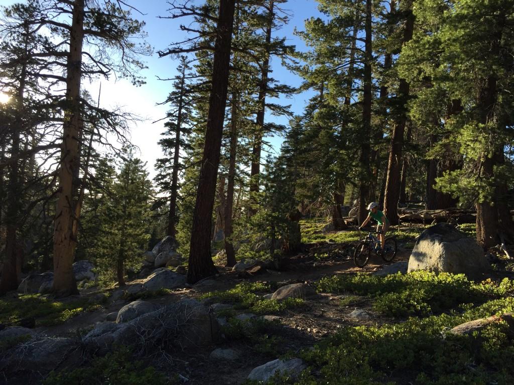 south lake tahoe mountain bike photos over the edge sports
